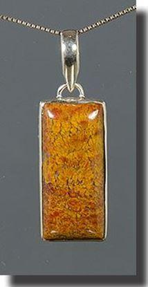 Bloody Basin Plume agate pendant