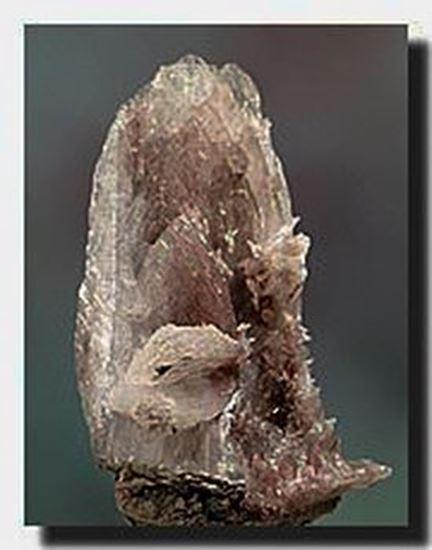 Colemanite Mineral Specimen