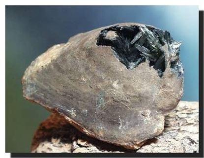 Vivianite mineral specimenfrom the Ukraine